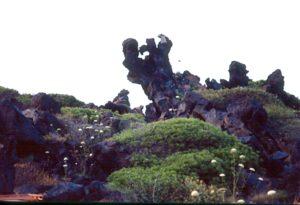 Pantelleria - Una roccia eruttiva