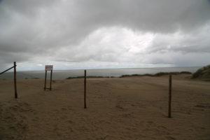 Klaipeda, Penisola di Neringa – Il deserto delle dune di sabbia
