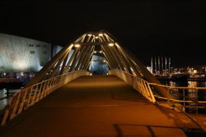 Il ponte per il museo di Nemo.