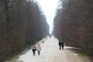 Il parco del castello di Schonbrun.
