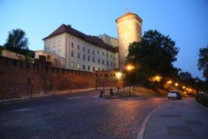 Il Castello di Wawel.