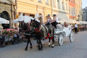 Rynek Glowny, una tipica carrozza per turisti.