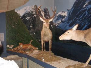 Jostedalsbreen Nasjonalparksenter