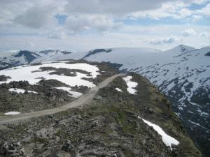 Monte Dalsnibba con le renne allo stato selvaggio.