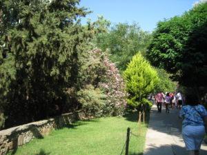 Il parco della casa di Maria.