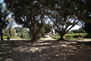 Il Castello di Donnafugata - il Parco.