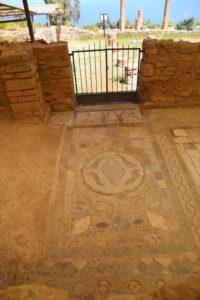 Il parco archeologico - I mosaici.