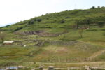 Parco archeologico di Morgantina,