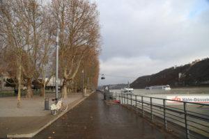 Passeggiata lungo la riva del Reno.