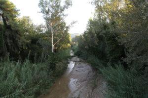 Il Fiume Cladeo affluente del fiume Alfeo.