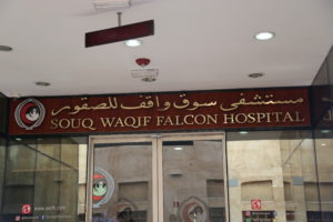 Ospedale per i falchi