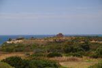 Parco archeologico di Selinunte.